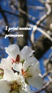 I primi accenni di primavera